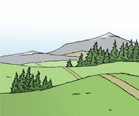 Zeichnung: Hügellandschaft mit grünen Wiesen