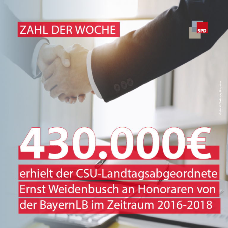 Zahl_der_Woche_Weidenbusch
